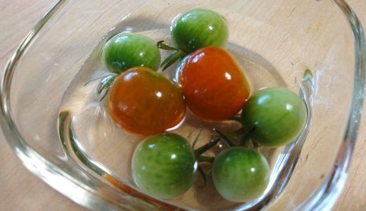 ベランダ菜園のトマト♪